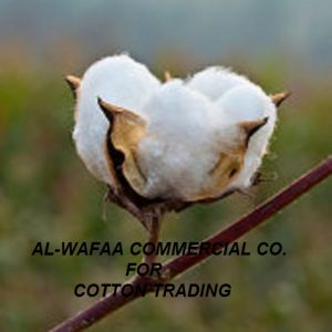 Al Wafaa Commerical Co. For Cotton Trading