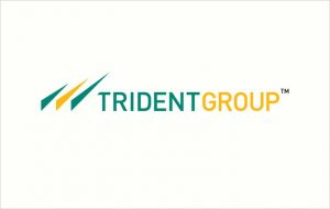 Trident Limited ( In the renewal process of the Egyptian Cotton Logo License).